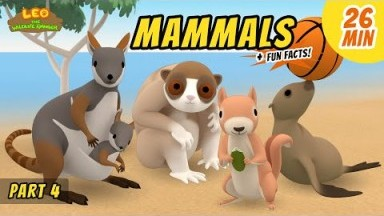 Mammals (Part 4/8) - Fun, Exciting Animals Stories for Kids | Educational | Leo the Wildlife Ranger