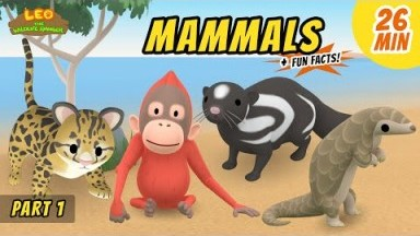 Mammals (Part 1/8) - Fun, Exciting Animals Stories for Kids | Educational | Leo the Wildlife Ranger