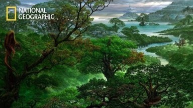 Deep Jungle - Monsters of the Forest [National Geographic Documentary 2020 HD]