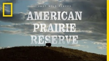 Last Wild Places: American Prairie Reserve | National Geographic