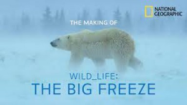 """Making of """"Wild_Life: The Big Freeze"""" with National Geographic Filmmaker Bertie Gregory"""